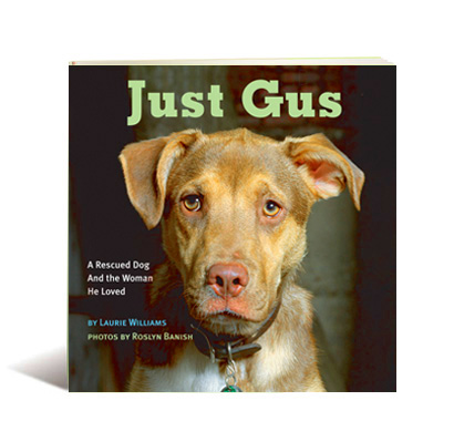 Just Gus